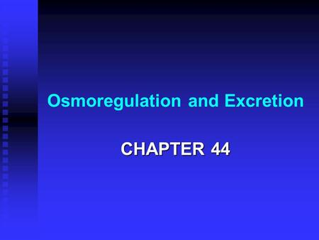 Osmoregulation and Excretion CHAPTER 44. WATER BALANCE Osmolarity - total solute concentration (M) = moles of solute per liter Osmolarity - total solute.