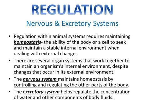 REGULATION Nervous & Excretory Systems