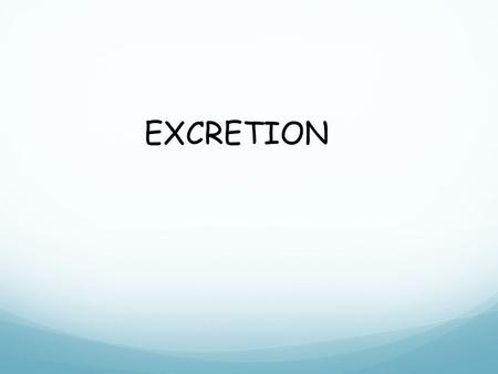 EXCRETION. Do Now - Give as many examples of EXCRETION as you can. And it's not this.
