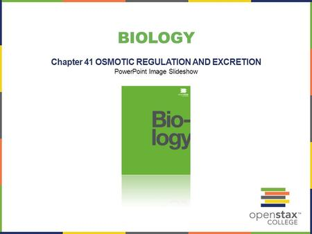 Chapter 41 OSMOTIC REGULATION AND EXCRETION