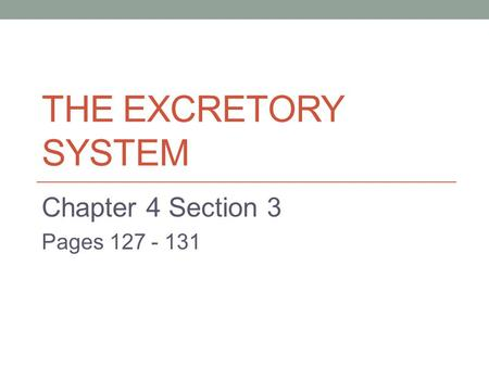 THE EXCRETORY SYSTEM Chapter 4 Section 3 Pages 127 - 131.