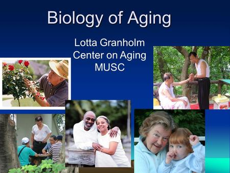 Biology of Aging Lotta Granholm Center on Aging MUSC.