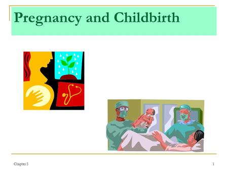 Chapter 51 Pregnancy and Childbirth. Chapter 52 Objectives: Pregnancy and Childbirth Describe the physical and emotional changes a woman typically goes.