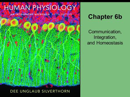 Chapter 6b Communication, Integration, and Homeostasis.