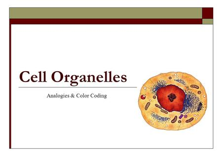 Cell Organelles Analogies & Color Coding. Welcome to the World of Cells! Cells make up all living things! They come in many shapes and sizes! They are.