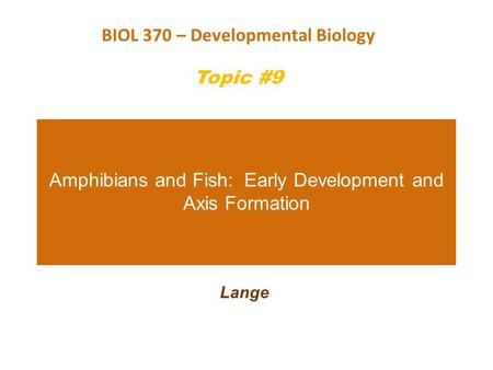 Amphibians and Fish: Early Development and Axis Formation Lange BIOL 370 – Developmental Biology Topic #9.