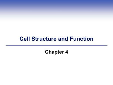 Cell Structure and Function Chapter 4. 4.1 What is a Cell?  Each cell has a plasma membrane, cytoplasm, and a nucleus (in eukaryotic cells) or a nucleoid.