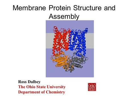 Membrane Protein Structure and Assembly Ross Dalbey The Ohio State University Department of Chemistry.