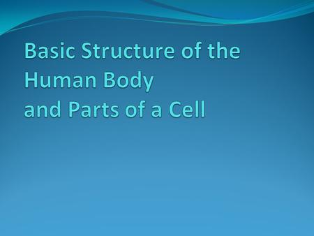 Basic Structure of the Human Body and Parts of a Cell