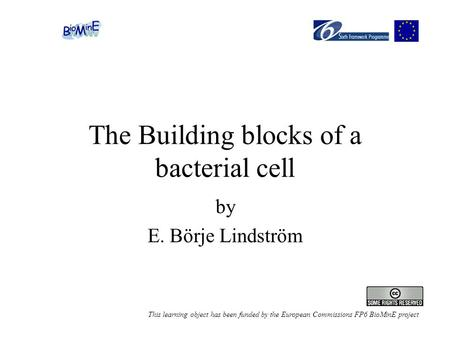 The Building blocks of a bacterial cell by E. Börje Lindström This learning object has been funded by the European Commissions FP6 BioMinE project.