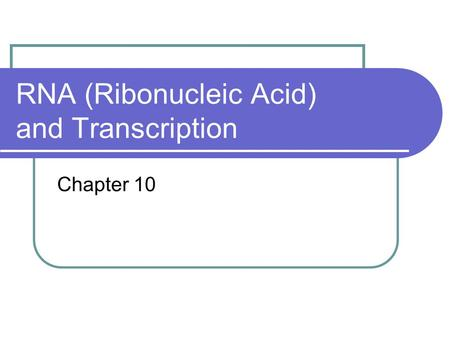 RNA (Ribonucleic Acid) and Transcription Chapter 10.