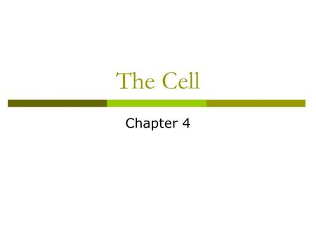 The Cell Chapter 4.