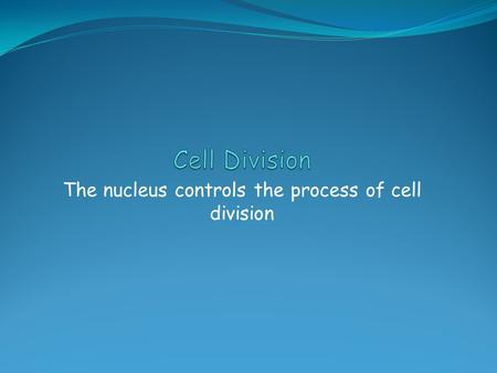 The nucleus controls the process of cell division.