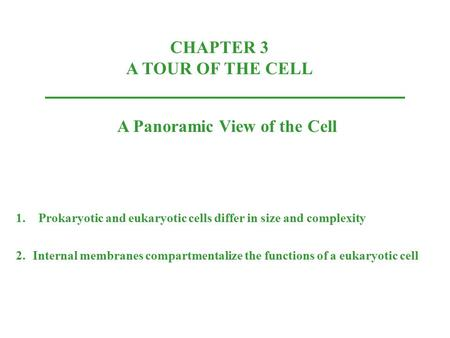CHAPTER 3 A TOUR OF THE CELL A Panoramic View of the Cell