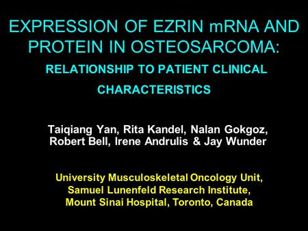 EXPRESSION OF EZRIN mRNA AND PROTEIN IN OSTEOSARCOMA: RELATIONSHIP TO PATIENT CLINICAL CHARACTERISTICS Taiqiang Yan, Rita Kandel, Nalan Gokgoz, Robert.