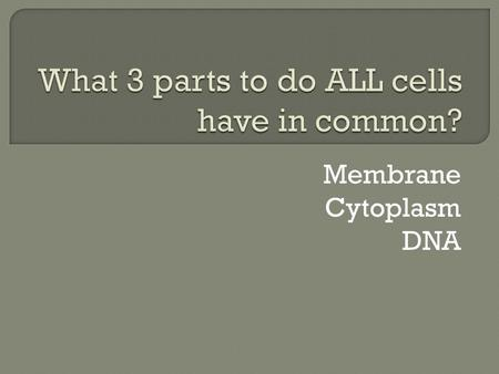 What 3 parts to do ALL cells have in common?