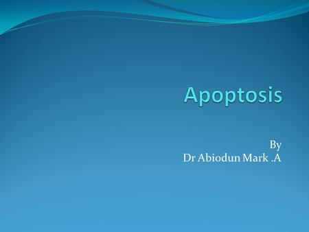 Apoptosis By Dr Abiodun Mark .A.