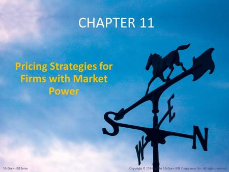 Pricing Strategies for Firms with Market Power
