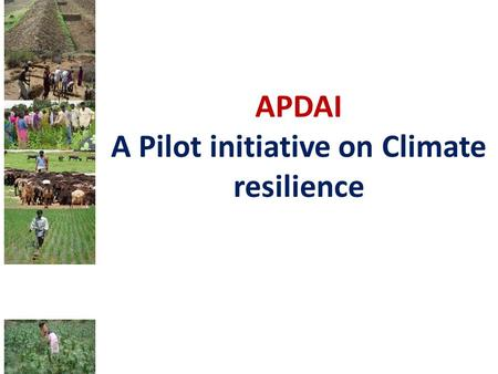 APDAI A Pilot initiative on Climate resilience. Objective Enhancing drought adaptation capacity of affected communities and reducing their vulnerability.