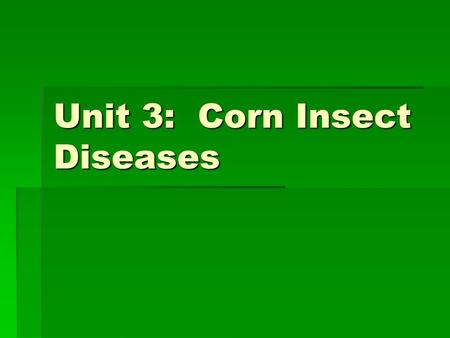Unit 3: Corn Insect Diseases.  European Corn Borer & Southwestern Corn Borer  Can cause 3% yield loss/corn borer/plant  Sweet corn 8%  Bore  Stalks.