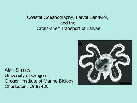 Alan Shanks University of Oregon Oregon Institute of Marine Biology Charleston, Or 97420 Coastal Oceanography, Larval Behavior, and the Cross-shelf Transport.