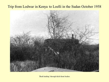 Trip from Lodwar in Kenya to Loelli in the Sudan October 1958 'Bush bashing' through thick thorn bushes.