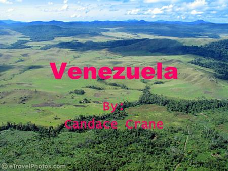 Venezuela By: Candace Crane. Government Federal Republic President Hugo Chavez President elected by vote Term of office is 6 years President may be re-elected.