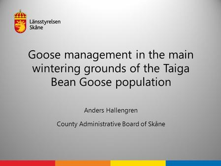 Goose management in the main wintering grounds of the Taiga Bean Goose population Anders Hallengren County Administrative Board of Skåne.