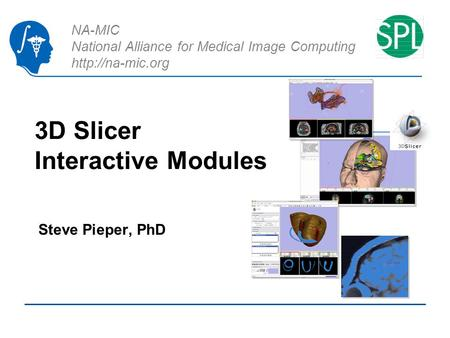 NA-MIC National Alliance for Medical Image Computing  3D Slicer Interactive Modules Steve Pieper, PhD.