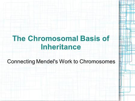 The Chromosomal Basis of Inheritance Connecting Mendel's Work to Chromosomes.