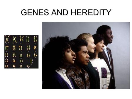 GENES AND HEREDITY.