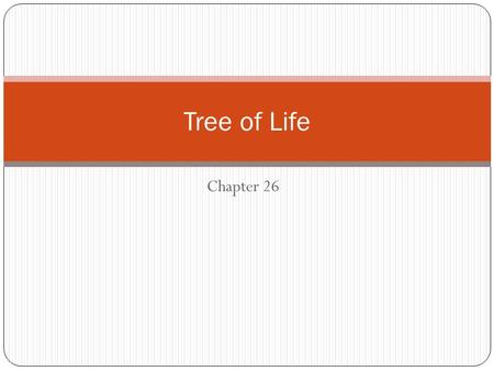 Tree of Life Chapter 26.