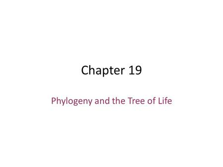 Chapter 19 Phylogeny and the Tree of Life. Fig. 26-1 why isn't it a snake? -no fused eyelid -no highly mobile jaw -no short tail some lizerds have lost.
