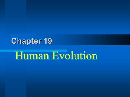 Chapter 19 Human Evolution. On the Origin of The Species Sold out in 1 day, had only a small section on the origin of man. 12 years later The descent.