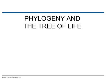 PHYLOGENY AND THE TREE OF LIFE © 2012 Pearson Education, Inc.