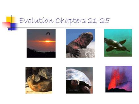 Evolution Chapters 21-25.