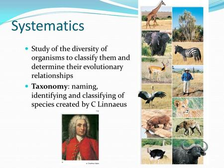 Systematics Study of the diversity of organisms to classify them and determine their evolutionary relationships Taxonomy: naming, identifying and classifying.