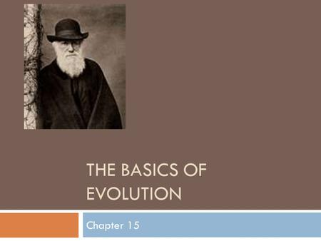 The Basics of Evolution