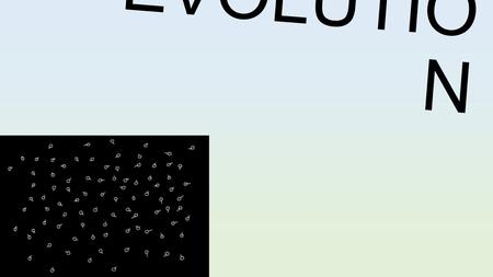 E V O L U T I O N. SPECIATION : the development of a new species Sometimes the variation among organisms is too great; eventually they could become separate.