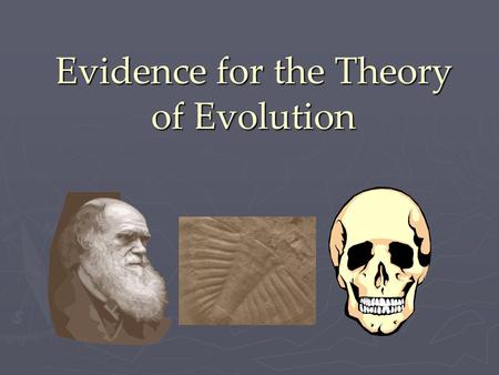Evidence for the Theory of Evolution. A Common Ancestor… ► The theory of evolution suggests that animals have a common ancestor. There are five pieces.
