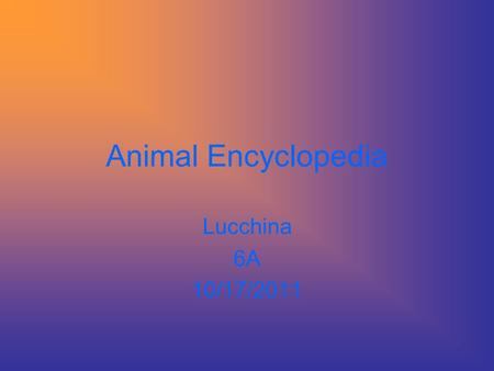 Animal Encyclopedia Lucchina 6A 10/17/2011 Table of Contents Queen Angelfish Kinkajous Peacock Atlantic Puffin Portuguese Man-Of-War Domestic Dog Fossa.