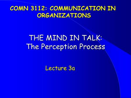 THE MIND IN TALK: The Perception Process Lecture 3a Lecture 3a COMN 3112: COMMUNICATION IN ORGANIZATIONS.