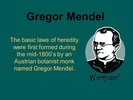 Gregor Mendel The basic laws of heredity were first formed during the mid-1800's by an Austrian botanist monk named Gregor Mendel.