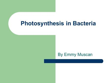 Photosynthesis in Bacteria