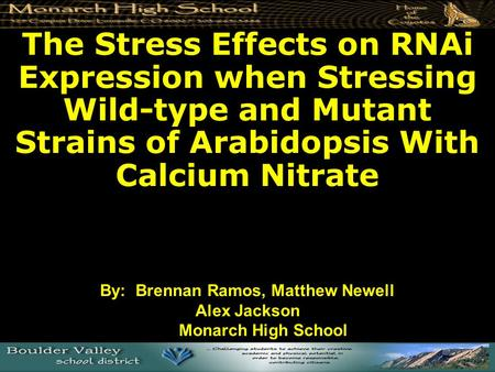 The Stress Effects on RNAi Expression when Stressing Wild-type and Mutant Strains of Arabidopsis With Calcium Nitrate By: Brennan Ramos, Matthew Newell.