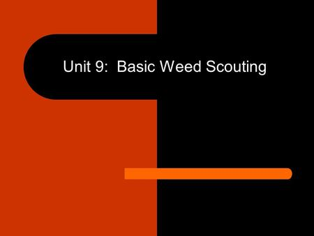 Unit 9: Basic Weed Scouting. Unit 9 Objectives: – Knowledge of basic scouting procedures – Understanding of proper scouting times – Using field weed surveys.