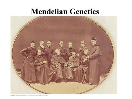 Mendelian Genetics. What Came Before? Blending Inheritance Inheritance of Acquired Characteristics.