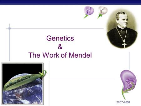 2007-2008 Regents Biology Genetics & The Work of Mendel.