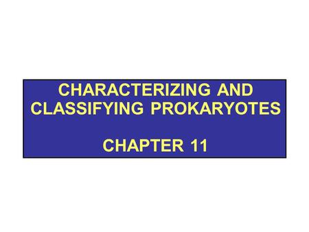 Characterizing and Classifying prokaryotes chapter 11