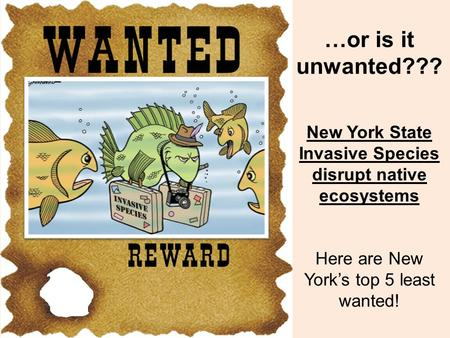 …or is it unwanted??? New York State Invasive Species disrupt native ecosystems Here are New York's top 5 least wanted!